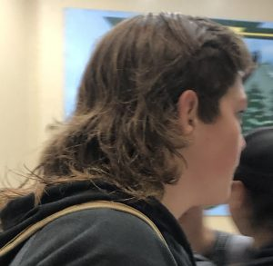 Are Mullets Really that Great?