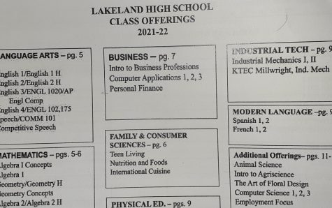The Top Electives for Lakeland Students