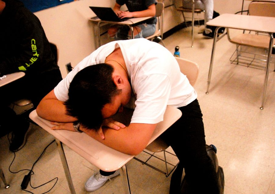 """David Tesch, a junior at Lakeland High School, laying his head on the desk in his first period class. Tesch, acting sad, """"poses"""" for the camera."""