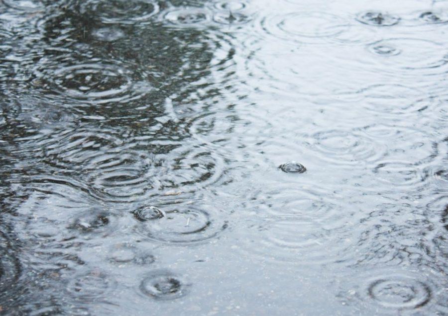 Photostory: Rainy Days